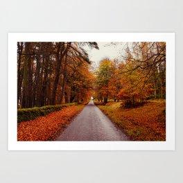 autumn forest road Art Print