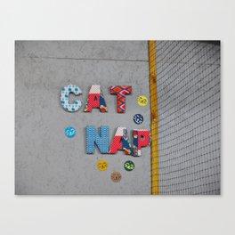 A Little Cat Nap Canvas Print