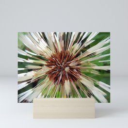 Dandelion after rain Mini Art Print