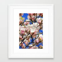 magnolia Framed Art Prints featuring  Magnolia. by Assiyam
