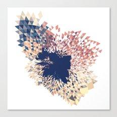 Datadoodle Splash Canvas Print