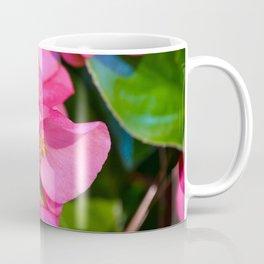 Pink Begonia Vine, Dragon Wing Coffee Mug