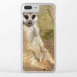 Funny Meerkat 02 Clear iPhone Case