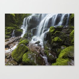 Gift of the Fae Canvas Print