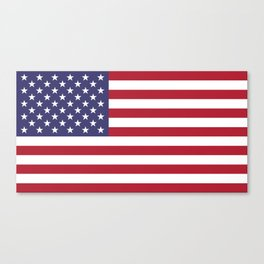 USA flag - Hi Def Authentic color & scale image Canvas Print