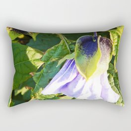 Shoo Fly - Apple of Peru - Nicandra Rectangular Pillow