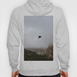 Free as a bird flying through the mountains, Big Bend - Landscape Photography Hoody