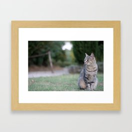 Composed Framed Art Print