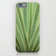Agave no. 1 iPhone 6s Slim Case