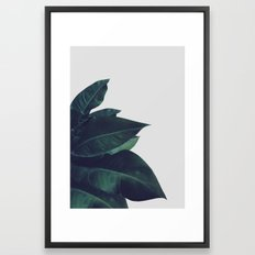 Enlighten Framed Art Print