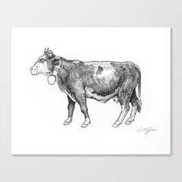 Abondance Cow Canvas Print