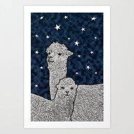 Alpacas on a starry night Art Print