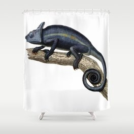 Parson's Chameleon Shower Curtain