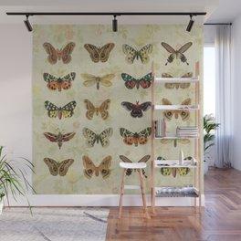 Moths & Butterflies Wall Mural