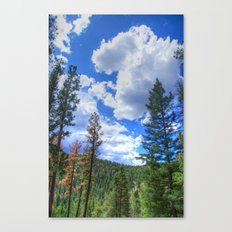 Mountainside Vista Canvas Print