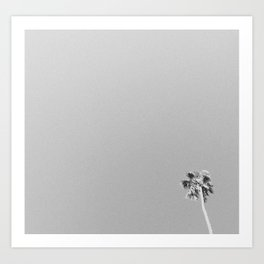 PALM TREE / California Art Print