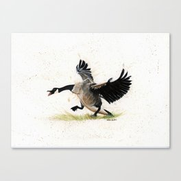 Cranky Goose - watercolor art, bird, animals Canvas Print