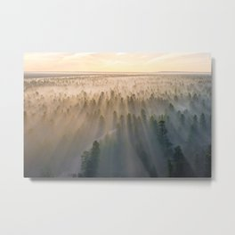 MOUNTAIN WITH TREES COVERED WITH FOGS AT DAYTIME Metal Print