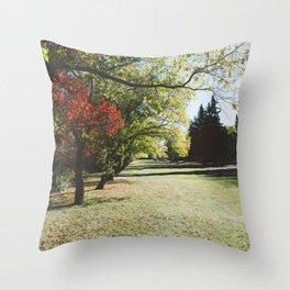 October Colours Throw Pillow