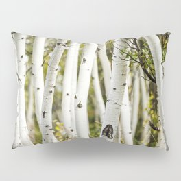 Picture Aspen Trees Pillow Sham