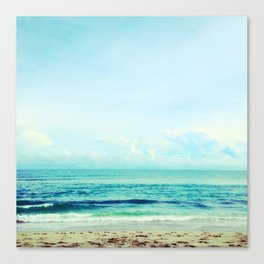 sea sheila beach Canvas Print