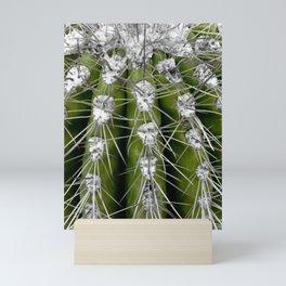 Green Cactus Mini Art Print
