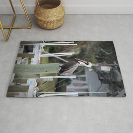 Adult Brown Pelican Rug