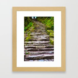 Stone Stairway in the Forest Framed Art Print