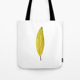 Autumn yellow leave 01 Tote Bag