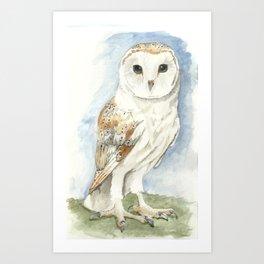 Barn Owl - Watercolor Art Print
