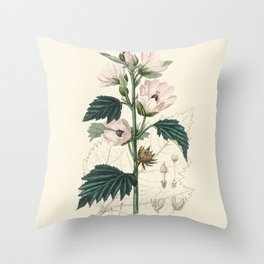Common marshmallow (Althea officinalis)  from Medical Botany (1836) by John Stephenson and James Mor Throw Pillow
