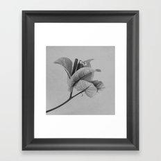 Forgotten No. 1 Framed Art Print