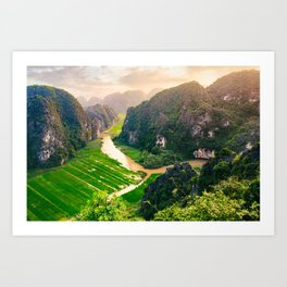 Vietnam Paddy Fields Fine Art Print  • Travel Photography • Wall Art Art Print