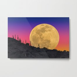 Once In a Lifetime Metal Print