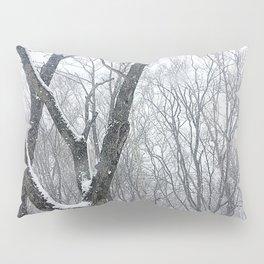 Winter in Narnia #2 Pillow Sham