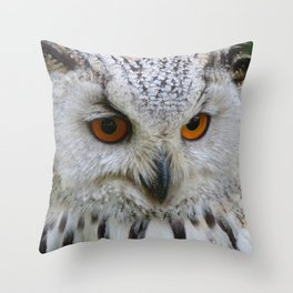 Owl   Chouette Throw Pillow