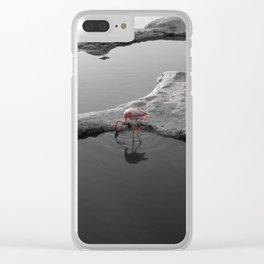 wild flamingo Clear iPhone Case