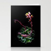succulent Stationery Cards featuring Succulent  by Nimai VandenBos