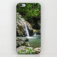 Tropical Pool iPhone & iPod Skin