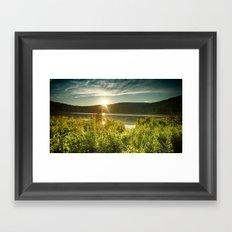 Acclimated Framed Art Print