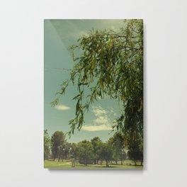 Vintage Trees Metal Print