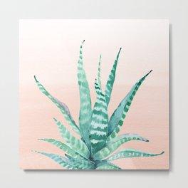 Desert Succulent Aloe Vera Metal Print