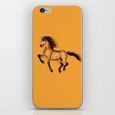 Prairie dancer iPhone & iPod Skin