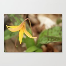 Gracefully Nodding Canvas Print