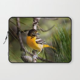 Oriole and Pine cone Laptop Sleeve