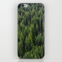 Wall of Trees iPhone Skin