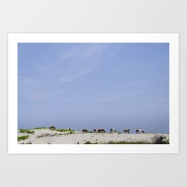 Assateague Island National Seashore landscape Art Print