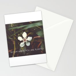 Bloom where you are planted #inspirational Stationery Cards