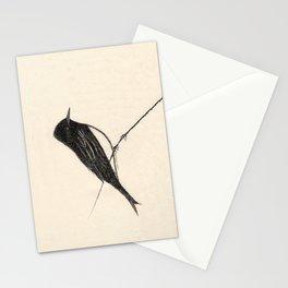 Black Phoebe Stationery Cards