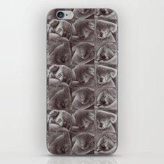 Sleepy Koala iPhone & iPod Skin